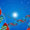 遺伝子検査などで話題のDNAとは?簡単に解説!